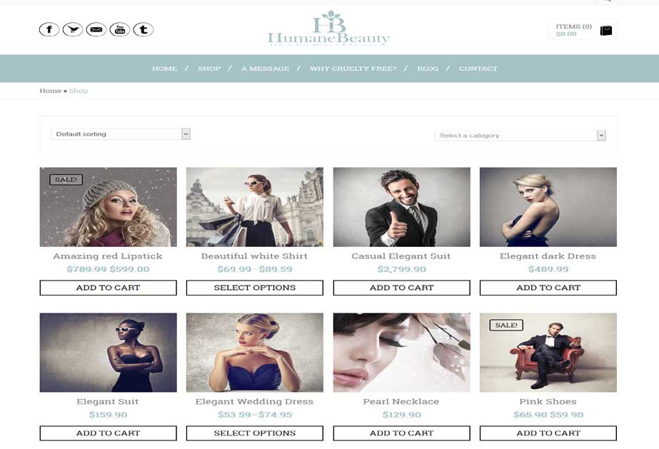A Woocommerce based wordpress site which allows users to buy skin care products  online. <br/>URL: http://dev.ideatewebsolutions.com/humane_beauty/