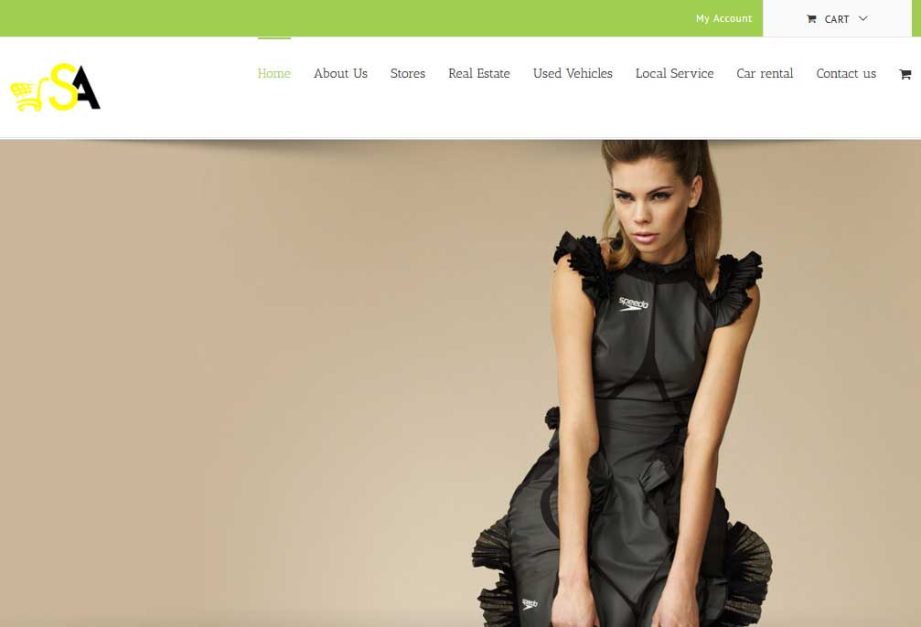 ShopAlez is an another woocomerce website built over AVADA theme.